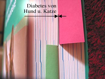 ketone im urin diabetes